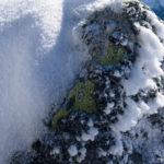 Stein mit Schnee