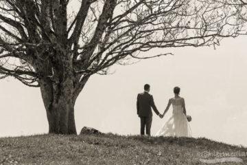 Braut und Bräutigam bei Baum